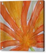 Oranje Bloemblaadje Acrylic Print