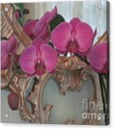 Orchards Blooming Infront Of Mirror Acrylic Print