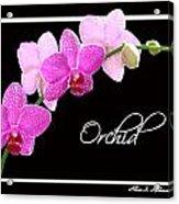 Orchid 2 2 Acrylic Print