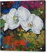 Orchid Mini Acrylic Print