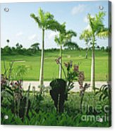Orchids At Iberostar Golf Course In Punta Cana Dr Acrylic Print