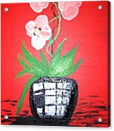 Orchids Acrylic Print by Pretchill Smith