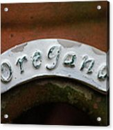 Oregano Acrylic Print