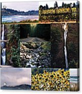 Oregon Collage From Sept 11 Pics Acrylic Print