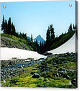 Oregon Hike Acrylic Print