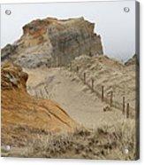 Oregon Sand Dunes Acrylic Print