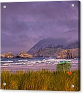 Oregon Seascape Acrylic Print by David Patterson