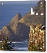 Oregon, United States Of America Heceta Acrylic Print