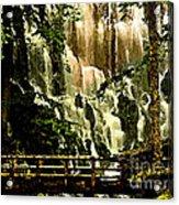 Oregon Wilds Acrylic Print