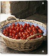 Organic Cherry Tomatoes Acrylic Print