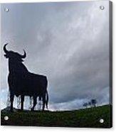 Osborne Bull A Spanish Landmark Acrylic Print