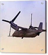 Osprey In Flight Iv Acrylic Print