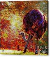 Ostrich II Acrylic Print