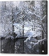 Our Pond In The Snow Acrylic Print
