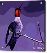 Out On A Limb - Purple Acrylic Print