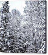 Over Coat Of Snow Acrylic Print