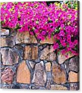 Over The Wall Acrylic Print