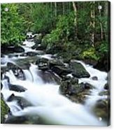 Owengarriff River, Killarney National Acrylic Print