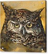 Owl Watercolor Acrylic Print