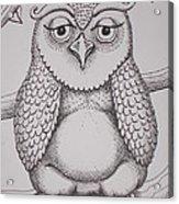 Owl Sketch Acrylic Print by Barbara Stirrup