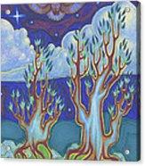 Owl Sky Acrylic Print