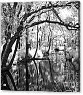 Pa. Country Stream Acrylic Print