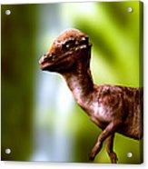 Pachyosaurus Dinosaur Acrylic Print