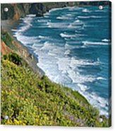 Pacific Coast Shoreline I Acrylic Print by Steven Ainsworth