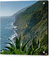 Pacific Coast Shoreline IIi Acrylic Print by Steven Ainsworth