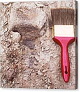 Paint Brush Next To Camarasaurus Acrylic Print