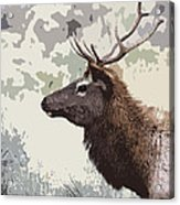 Painted Bull Elk Acrylic Print