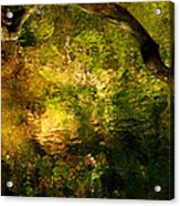 Painted Forest Acrylic Print