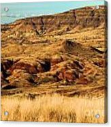 Painted Hills In Sheep Rock Acrylic Print