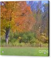 Painted Leaves Of Autumn Acrylic Print