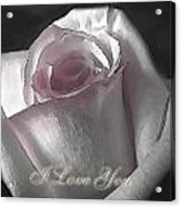 Pale Pink Rose Greeting Card   I Love You Acrylic Print