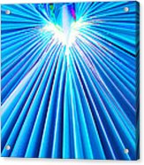 Palm Frond In Blue Acrylic Print