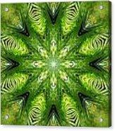 Palm Kaleidoscope 11 Acrylic Print