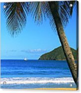 Palm Shaded Island Beach  Acrylic Print