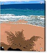 Palm Shadow On The Beach Acrylic Print