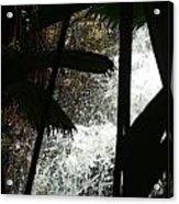 Palm Silhouette Acrylic Print