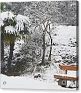 Palm Tree And A Bench With Snow Acrylic Print