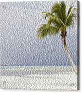 Palm Tree On The Tropical Beach Acrylic Print