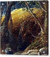 Palmer: Apple Tree Acrylic Print
