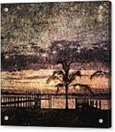 Palms And Docks Acrylic Print