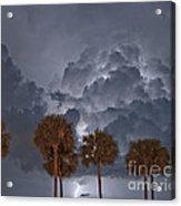 Palms And Lightning 7 Acrylic Print