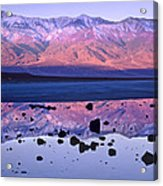 Panamint Range Reflected In Standing Acrylic Print by Tim Fitzharris