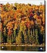 Panorama Of Trees Along The Waters Edge Acrylic Print