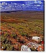 Panoramic View Of Fossil Butte Nm Valley Acrylic Print