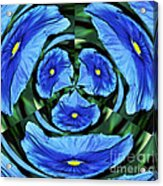 Pansy In Triplicate Acrylic Print