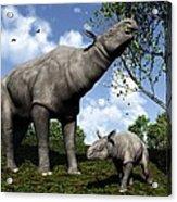 Paraceratherium, Artwork Acrylic Print